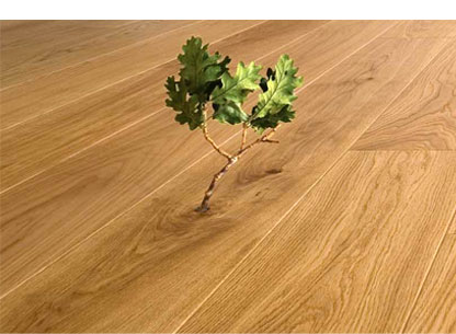 Environmentally Friendly Wood Floor Finishes From All In Hardwood